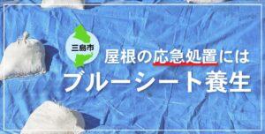 三島市 屋根ブルーシート養生